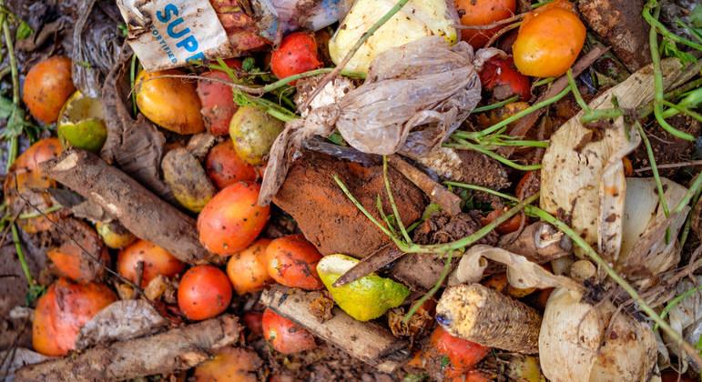 ONU: El mundo desperdicia el 17% de los alimentos que produce mientras 811 millones de personas sufren hambre